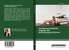 Bookcover of Verfahrensrechtliche Aspekte des Aufteilungsverfahrens