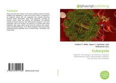 Portada del libro de Eukaryote