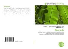 Buchcover von Bermuda
