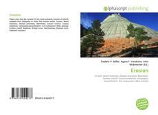Bookcover of Erosion
