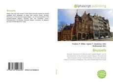 Capa do livro de Brussels