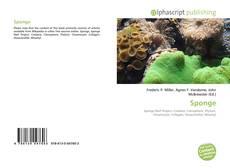 Bookcover of Sponge