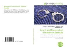 Bookcover of Arrest and Prosecution of Radovan Karadžić