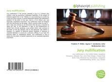 Couverture de Jury nullification