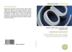 Internet Activism的封面