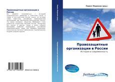 Bookcover of Правозащитные организации в России
