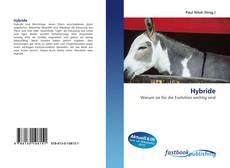 Buchcover von Hybride