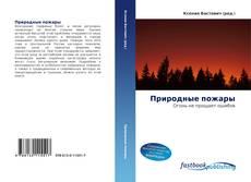 Buchcover von Природные пожары