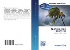Buchcover von Тропические циклоны
