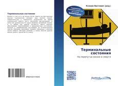Bookcover of Терминальные состояния