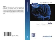Bookcover of Brain