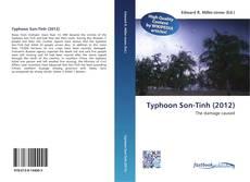 Capa do livro de Typhoon Son-Tinh (2012)