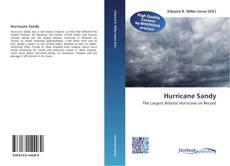 Copertina di Hurricane Sandy