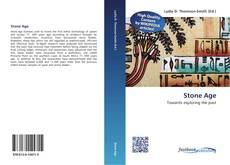 Capa do livro de Stone Age