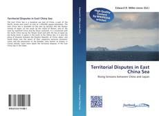 Territorial Disputes in East China Sea kitap kapağı