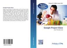 Google Project Glass kitap kapağı