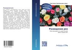 Разведение роз kitap kapağı