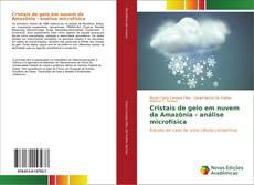 Cristais de gelo em nuvem da Amazônia - análise microfísica kitap kapağı