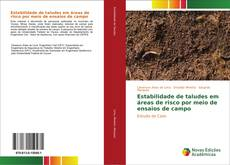 Buchcover von Estabilidade de taludes em áreas de risco por meio de ensaios de campo