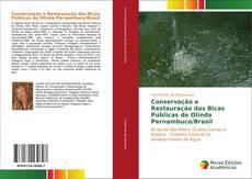 Bookcover of Conservação e Restauração das Bicas Públicas de Olinda Pernambuco/Brasil