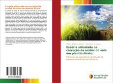 Обложка Escória silicatada na correção da acidez do solo em plantio direto