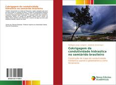 Capa do livro de Cokrigagem da condutividade hidraúlica no semiárido brasileiro