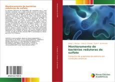 Couverture de Monitoramento de bactérias redutoras de sulfato
