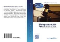 Bookcover of Международные судебные органы
