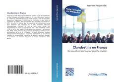 Bookcover of Clandestins en France