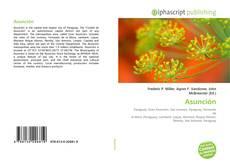 Bookcover of Asunción