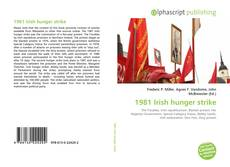 Bookcover of 1981 Irish hunger strike