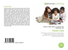 Bookcover of Foster Care
