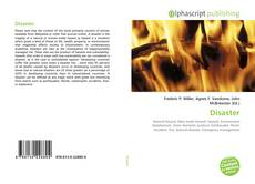 Bookcover of Disaster