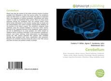 Buchcover von Cerebellum