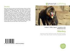 Monkey的封面