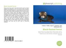 Bookcover of Black-footed Ferret