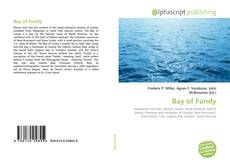Buchcover von Bay of Fundy