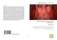 Bookcover of Kidney