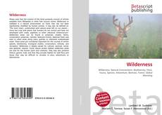 Bookcover of Wilderness