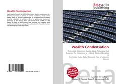 Bookcover of Wealth Condensation