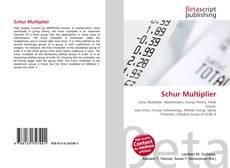 Borítókép a  Schur Multiplier - hoz