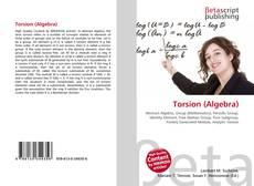 Bookcover of Torsion (Algebra)