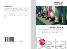 Public Sector kitap kapağı