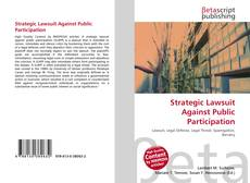 Bookcover of Strategic Lawsuit Against Public Participation