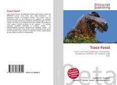 Trace Fossil kitap kapağı