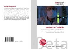 Borítókép a  Norberto Ceresole - hoz