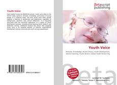 Bookcover of Youth Voice