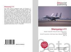 Shenyang J-11的封面