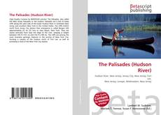 Bookcover of The Palisades (Hudson River)