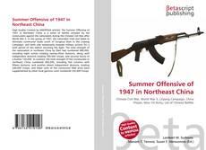 Copertina di Summer Offensive of 1947 in Northeast China